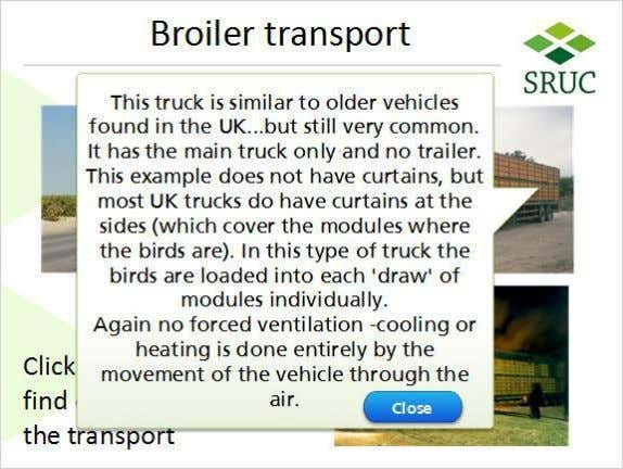 UK Truck (Slide Layer) Canadian truck (Slide Layer) Published by Articulate® Storyline www.articulate.com