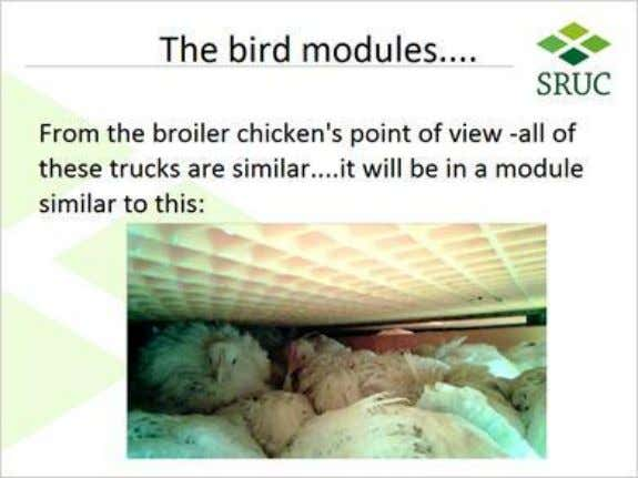 1.14 The bird modules 1.15 However Published by Articulate® Storyline www.articulate.com