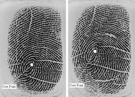 Strength. An example of Core point is shown in Figure 3. Figure.3. Two fingerprints of same