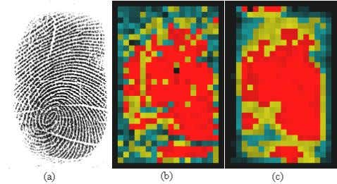 coherence. The regions around core point have low value. Figure 5. (a) Original Fingerprint (b) Coherence