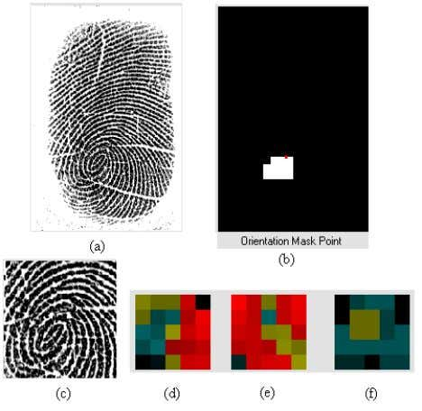 array and evaluate above discussed features for the regions Fig. 9 (a) Selected Fingerprint (b) Thresholded