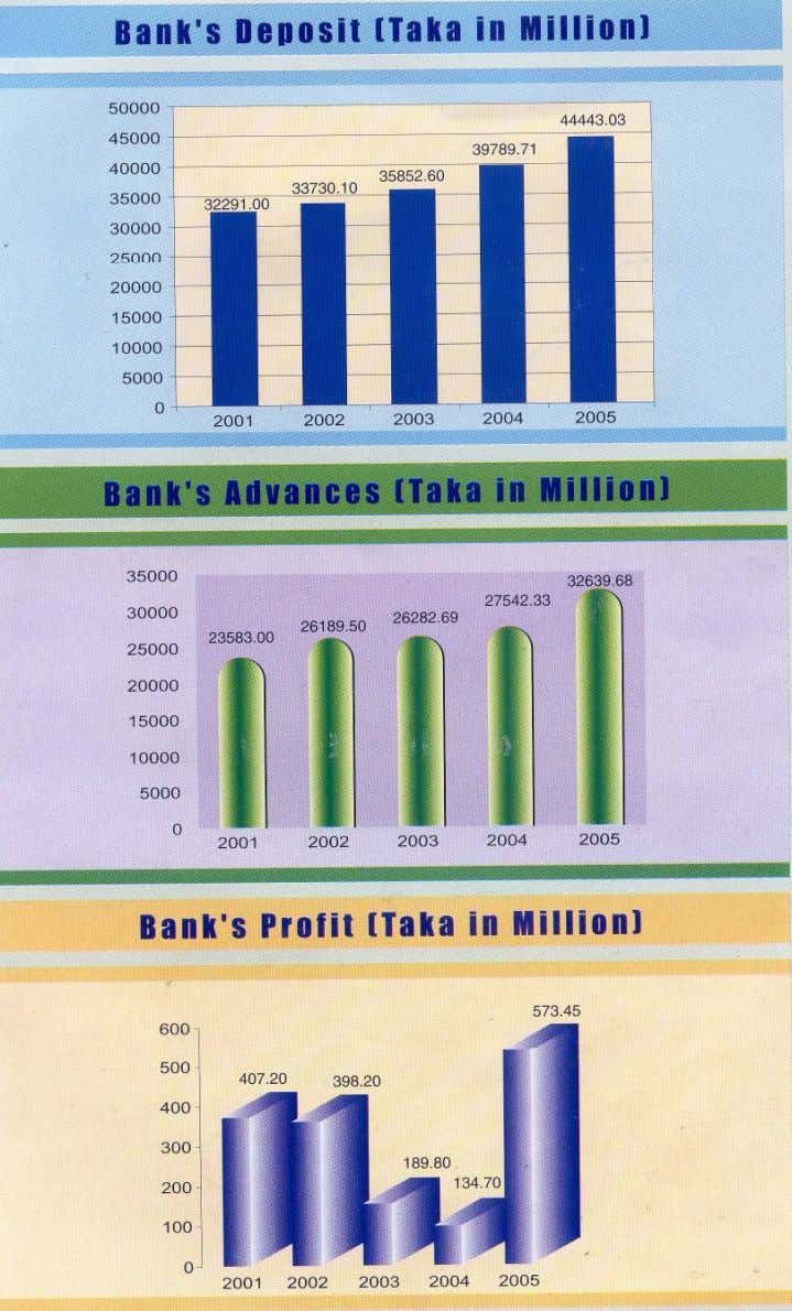 Source- Annual Report of Pubali Bank Limited 2005. 33