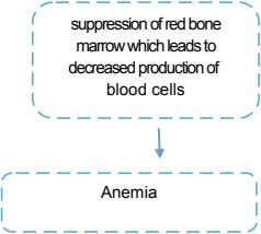 suppression of red bone marrow which leads to decreased production of blood cells Anemia