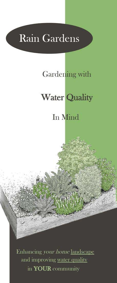 Rain Gardens Gardening with Water Quality In Mind Enhancing your home landscape and improving water