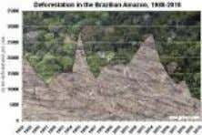 Deforestation Charts [ large medium small ] Deforestation in the Brazlian Amazon, 1988-present context of the