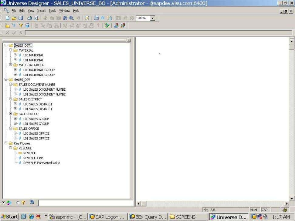 BUSINESS OBJECTS XI 3.1 Beginner Guide Comparison between UNIVERSE vs. SAP BEx Query/Info cube (See the
