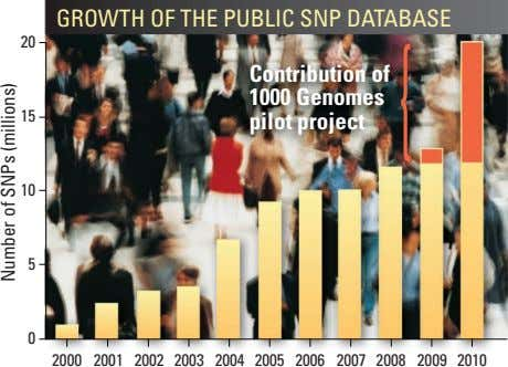 GROWTH OF THE PUBLIC SNP DATABASE 20 Contribution of { 1000 Genomes 15 pilot project