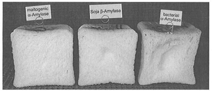 ENZYMES FOR BREAD. PASTA AND NOODLE PRODUCTS 27 Figure 2.7 Toast bread containing maltogenic alpha -amylase,