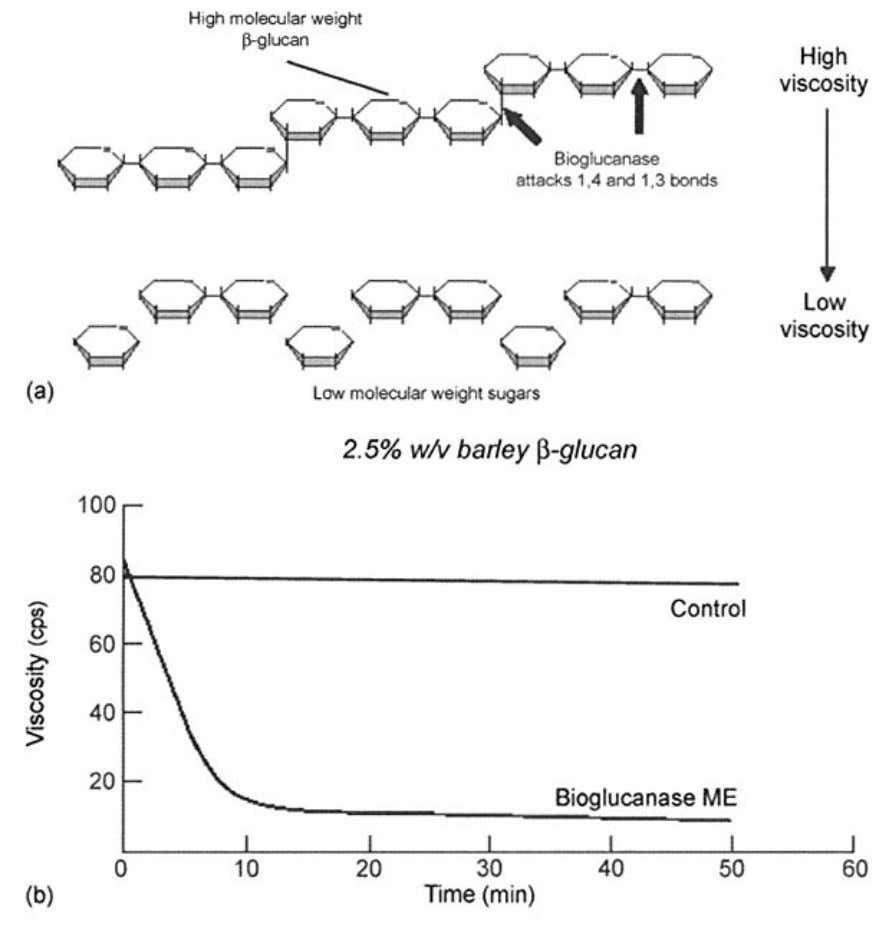 ENZYMES IN BREWING 67 Figure 3.3 Barley glucan degradation. (a) schematic; (b) practical viscosity reduction at