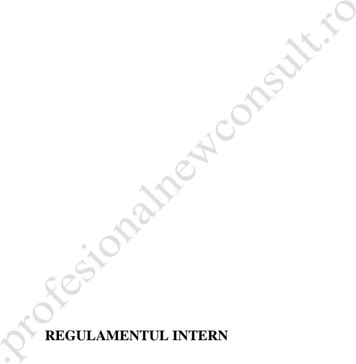 REGULAMENTUL INTERN