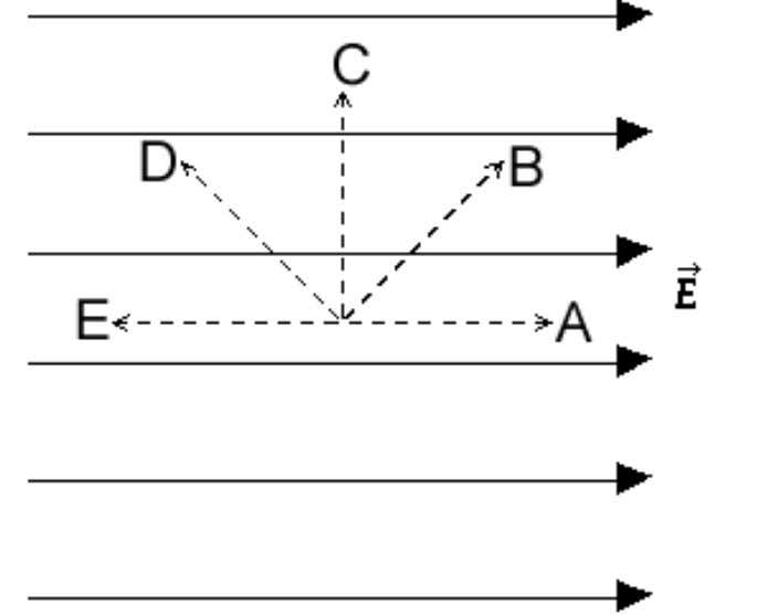 The figure depicts a uniform electric field. Along which direction is the increase in the electric