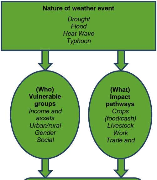 Nature of weather event Drought Flood Heat Wave Typhoon (Who) (What) Vulnerable Impact groups pathways Income