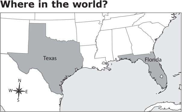 Where in the world? Texas Florida N W E S