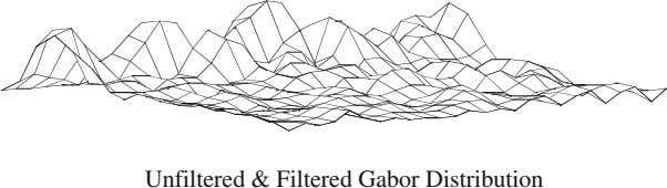 Unfiltered & Filtered Gabor Distribution