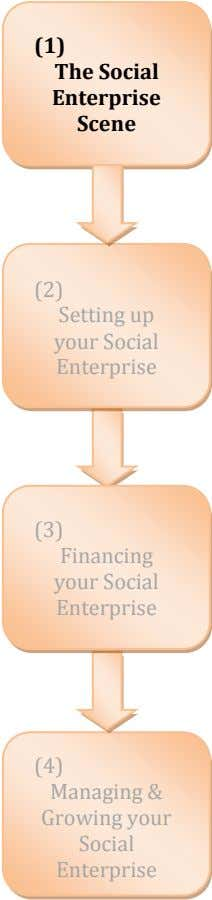 (1) The Social Enterprise Scene (2) Setting up your Social Enterprise (3) Financing your Social