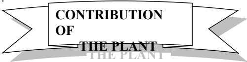 CONTRIBUTION CONTRIBUTION OF OF THE PLANT THE PLANT