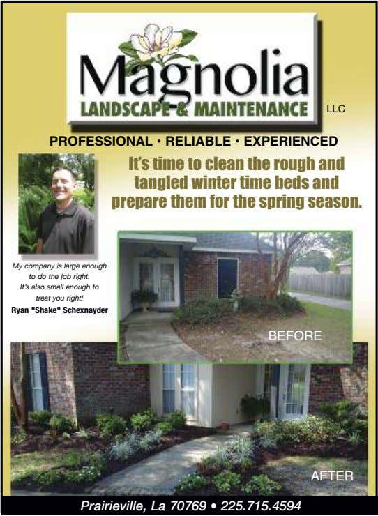 LLC PROFESSIONAL • RELIABLE • EXPERIENCED It's time to clean the rough and tangled winter
