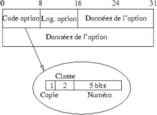 Protocoles : ICMP(1), UDP(17), TCP(6).  Options IP :  Exemples d'options : o routage strict