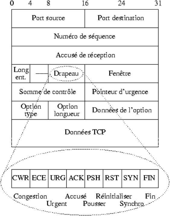 2.4.3 Format des datagrammes 2.4.4 Options TCP  L'option No operation o format de l'option :