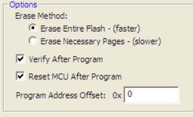 IDE. Make sure that the following checkboxes are selected: 19. Click the Program button. You should