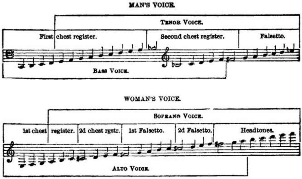 Voice Production in Singing and Speaking, by Wesley Mills. Fig. 50. Tabular representation of Madame Seiler's