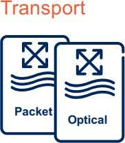 Transport Packet Optical