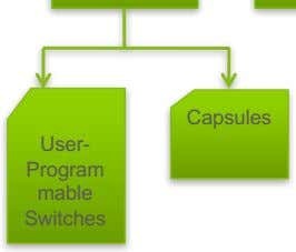 Capsules User- Program mable Switches