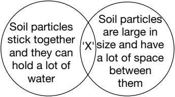 Soil particles stick together and they can hold a lot of water 'X' Soil particles