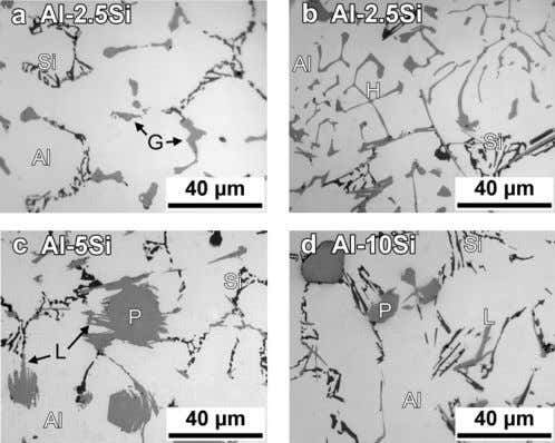 C.-J. Wang / Intermetallics 19 (2011) 1455 e 1460 1457 Fig. 2. Top-view OM micrographs of