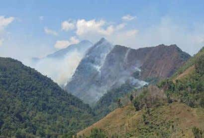 within riverbanks, mountains, farmlands and built- up areas. Forest Fire @ Mt. Kitanglad Range Natural Park