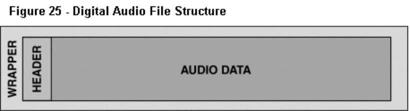 or streaming capability, to a digital audio file. The format of a digital audio file refers