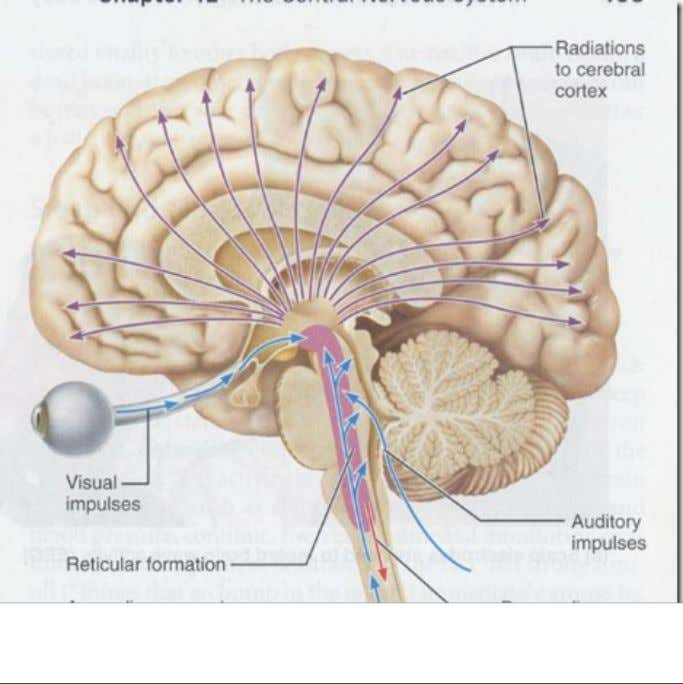 reticular activating system(ARAS) >> level << drowsiness stuporous semi-coma coma Friday, March 16, 2012