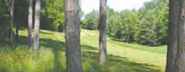 LAKEWOOD ON THE GREEN M-1818685 Wooded building site on the second fairway at Lakewood on the