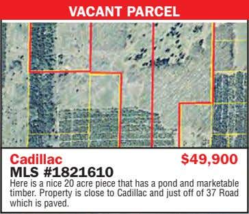 VACANT PARCEL Cadillac $49,900 MLS #1821610 Here is a nice 20 acre piece that has