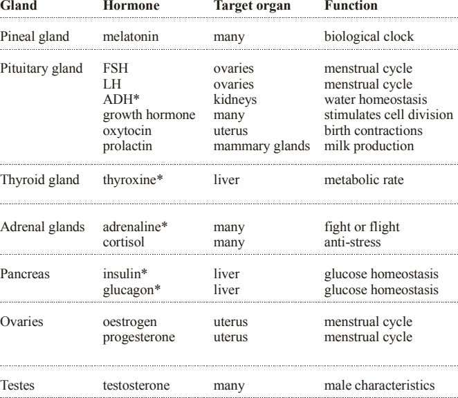 Gland Hormone Target organ Function Pineal gland melatonin many biological clock Pituitary gland FSH ovaries