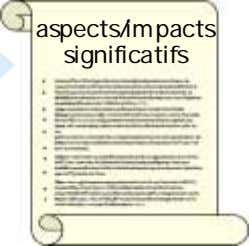 aspects/impacts significatifs
