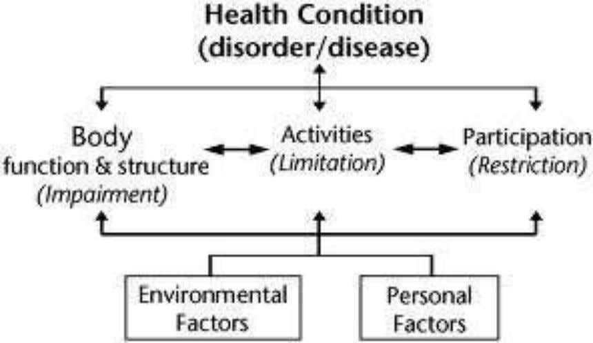 International Classification of Functioning, Disability and Health ( ICF )