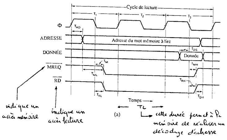 Cours architecture des ordinateurs - 51 - Cycle de lecture sur un BUS synchrone Cycle de