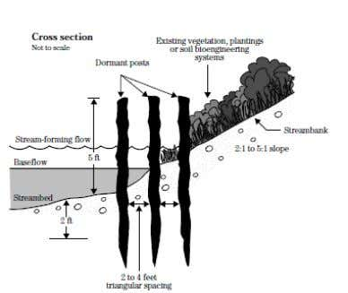 will also serve to stabilize the soil along the shore. Figure 39: Typical cross-section of a