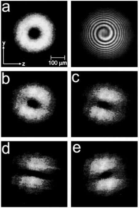 resulted in diffractive spreading producing an annular FIG. 1. Evolution of a charge-one vortex for applied