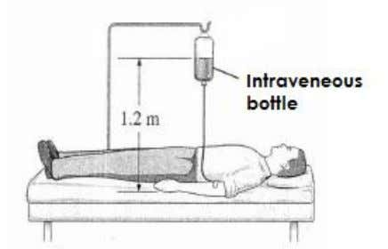 with medicine from an intravenous injection ( IV ) bottle. Diagram 8.1 (a) (b) (c) [1