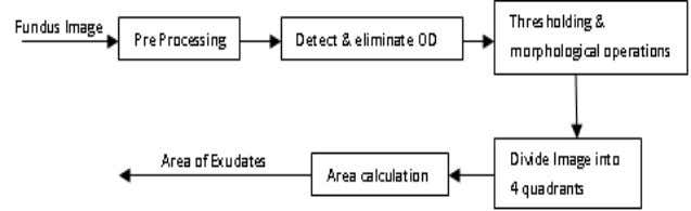 exudates are present in more than three quadrants (fig.6.d). Fig. 4. Block Diagram for Exudates Extraction