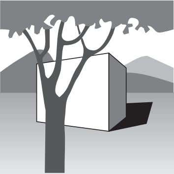 this usually takes the form of Drawing Form 8/2007 17 foreground (tree), middleground (cube) and background