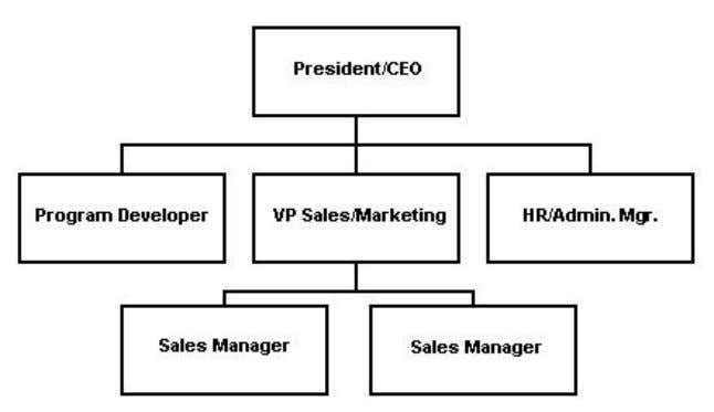 program designers, programmers, testers, and other employees. Below is Palmtop Innovations' organizational chart: