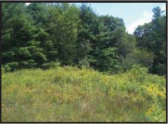 OFF ROUTE 22A, GRANVILLE, NY LOOKING FOR A BUILDING LOT? Build your dream home on one