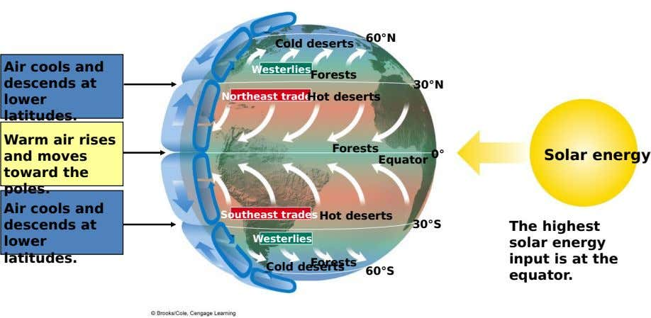 60°N Cold deserts Air cools and descends at lower latitudes. Westerlies Forests Northeast tradesHot deserts 30°N