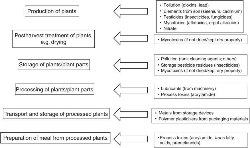 Production of plants Pollution (dioxins, lead) Elements from soil (selenium, cadmium) Pesticides (insecticides,