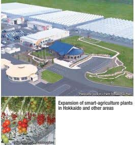 Panoramic view of J Farm Tomakomai Plant Expansion of smart-agriculture plants in Hokkaido and other