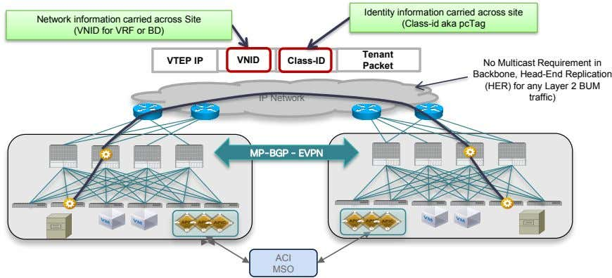 Network information carried across Site Identity information carried across site (Class-id aka pcTag (VNID for