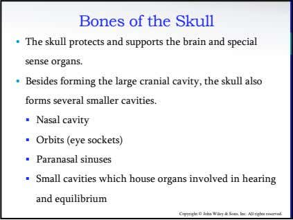 Bones of the Skull • The skull protects and supports the brain and special sense